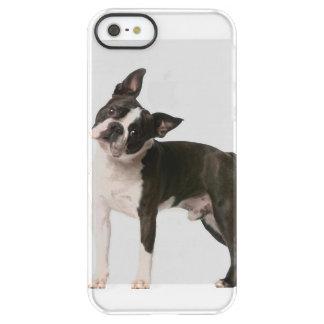 French bulldog - puppy dog - frenchie dog permafrost® iPhone SE/5/5s case