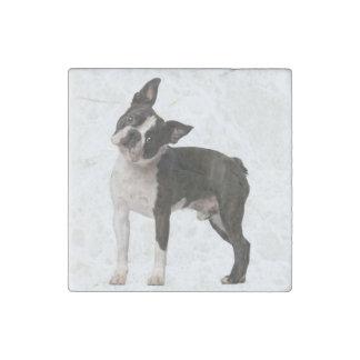 French bulldog - puppy dog - frenchie dog stone magnet