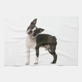 French bulldog - puppy dog - frenchie dog tea towel