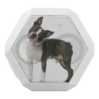French bulldog - puppy dog - frenchie dog white bluetooth speaker