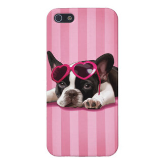 French Bulldog Puppy iPhone 5 Case