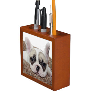French Bulldog Puppy Lying In A Dog Bed Pencil Holder