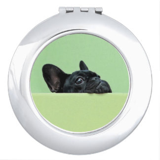 French Bulldog Puppy Peering Over Wall Travel Mirrors