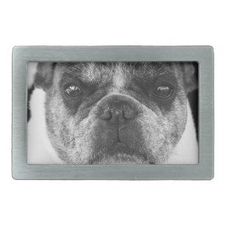 french-bulldog rectangular belt buckles