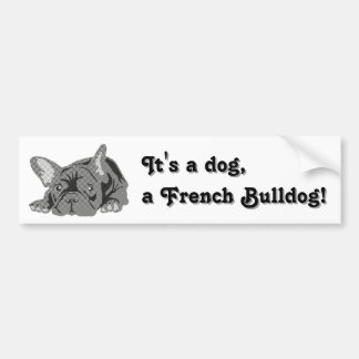 French Bulldog sitting Bumper Sticker