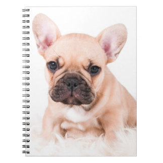 French Bulldog Spiral Notebook