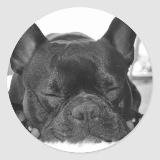 French Bulldog Sticker