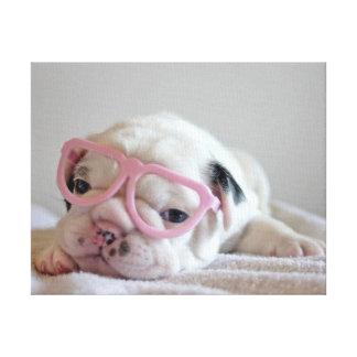 French bulldog white cub Glasses lying on white Canvas Print