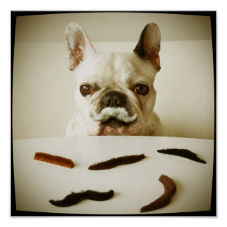 French Bulldog With A Mustache Poster