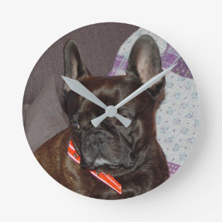 FRENCH BULLY - Photo: Jean Louis Glineur Round Clock