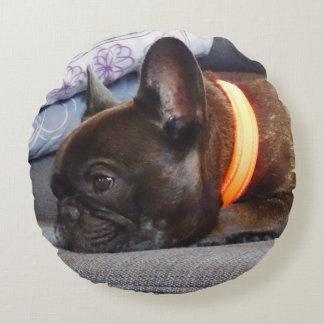 FRENCH BULLY - Photo: Jean Louis Glineur Round Cushion