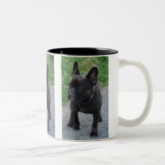 FRENCH BULLY - Photo: Jean Louis Glineur Two-Tone Coffee Mug
