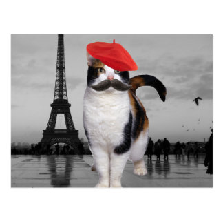 French Cat in Paris Postcard