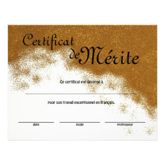 French Class Generic Certificate of Excellence 21.5 Cm X 28 Cm Flyer