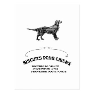 French Dog, Antique Dog Biscuit Ad turned fashion Postcard
