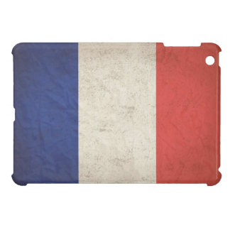 French Flag Distressed iPad Mini Cover
