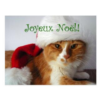 French Greeting Cat in Santa Hat Postcard
