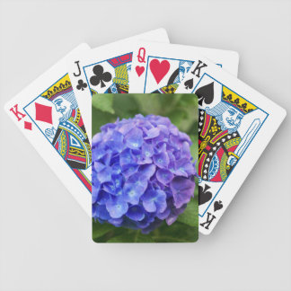 French hydrangea (Hydrangea macrophylla) Bicycle Playing Cards