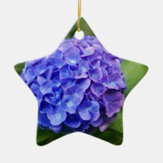 French hydrangea (Hydrangea macrophylla) Ceramic Ornament