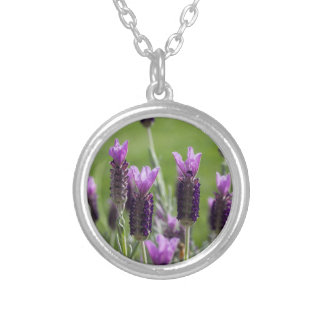 French Lavender Necklace