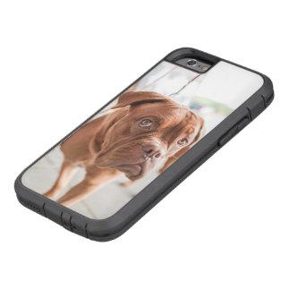 French Mastiff Tough Xtreme iPhone 6 Case