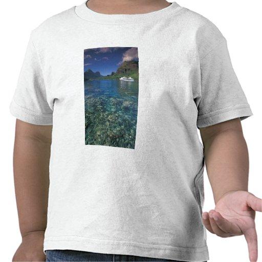 French Polynesia, Moorea. Cooks Bay. Cruise ship Shirts