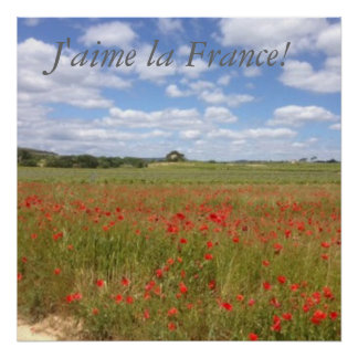French Poppies in Southern France Poster
