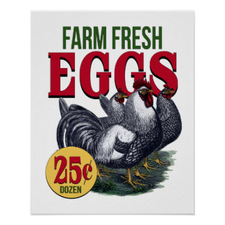 French Rooster Farm Fresh Eggs Advertisement Print