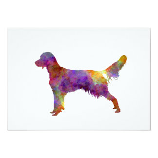 French Spaniel in watercolor Card
