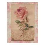 French Victorian Pink Rose Print