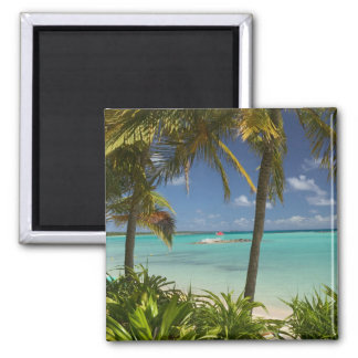 French West Indies, Guadaloupe, Grande Terre, 2 Square Magnet