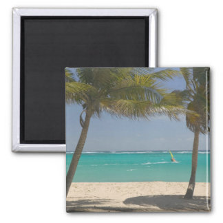 French West Indies, Guadaloupe, Marie, Galante 2 Square Magnet
