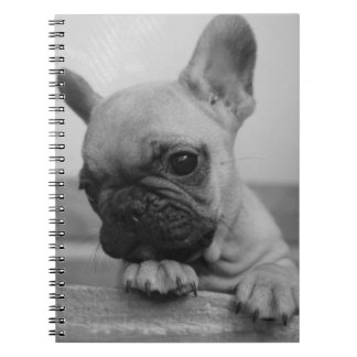 Frenchie puppy notebook