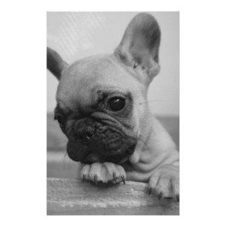Frenchie puppy stationery