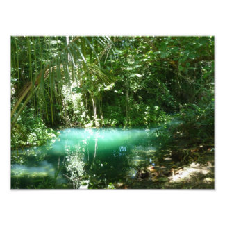 Frenchman's Cove Jamaica Photo Print