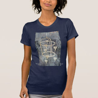 Frescoes On The Life Of St. Francis Of Assisi T Shirts