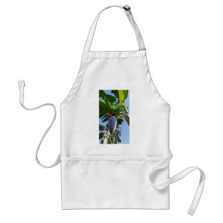 fresh banana apron