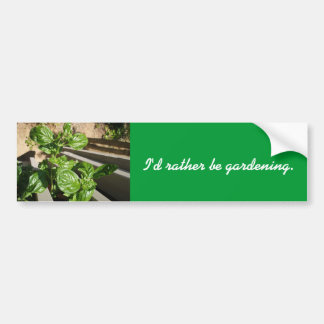 Fresh basil leaves bumper sticker
