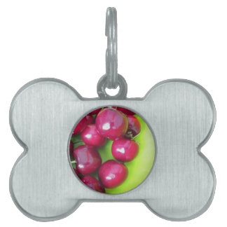Fresh cherries on green background pet ID tag