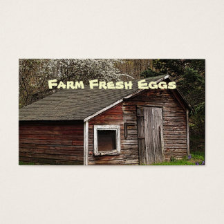 Fresh Eggs Business Card