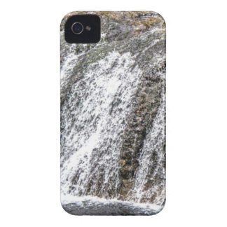 fresh falls in the forest Case-Mate iPhone 4 case