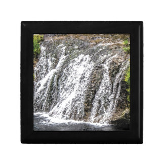 fresh falls in the forest gift box