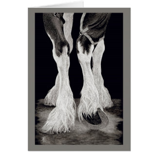 """Fresh Feathers"" - Shire Draught   Horse Card"