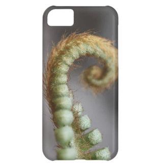 Fresh Fern Case For iPhone 5C