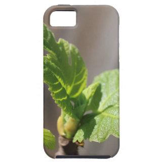 Fresh Fig Leaf Case For The iPhone 5