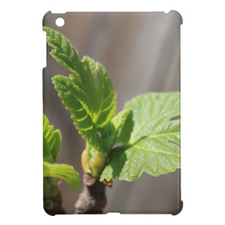 Fresh Fig Leaf Cover For The iPad Mini