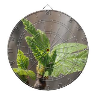 Fresh Fig Leaf Dartboard
