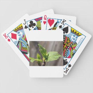Fresh Fig Leaf Poker Deck