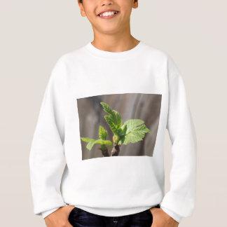 Fresh Fig Leaf Sweatshirt