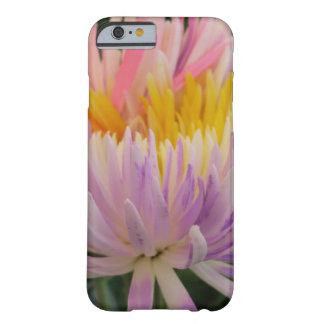 Fresh Flowers Barely There iPhone 6 Case